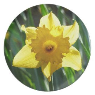 Happy Easter! Pretty Daffodils 03.3.y_rd Plate