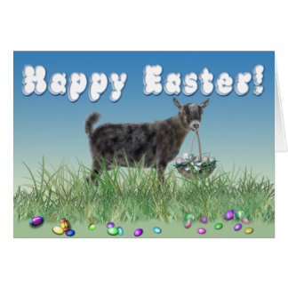 Happy Easter Pygmy 2 Goat Greeting Card