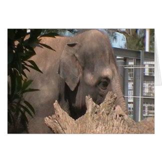 Happy Elephant Greeting Card