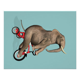 Happy Elephant On Tricycle