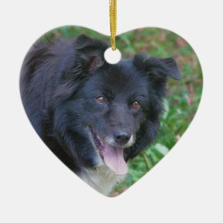 Happy Face Border Collie Dog Ornament