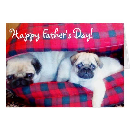 Happy Father's Day pugs greeting card