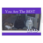 Happy Father's Day the From Cats Greeting Card