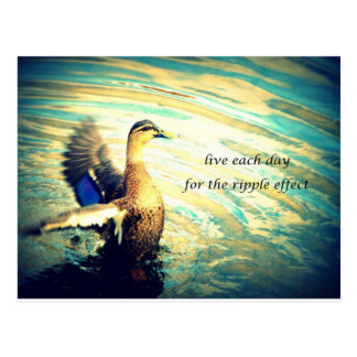 Happy flapping duck in water postcard