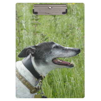 Happy greyhound clipboard (p381)