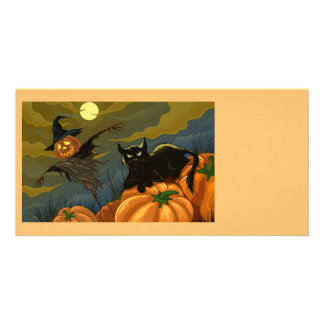 Happy Halloween Pumpkins Black Cat Picture Card