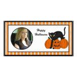 Happy Halloween Scardy Cat Photo Cards