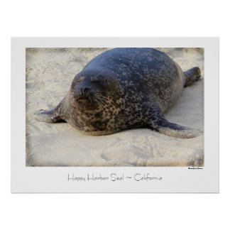 Happy Harbor Seal ~ Travel Poster
