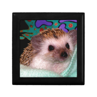 Happy Hedgehog Gift Box