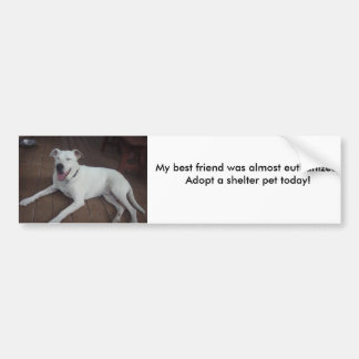 Happy Henry, My best friend was almost euthaniz... Bumper Sticker