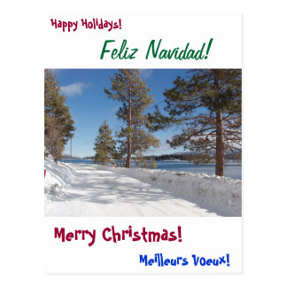 Happy Holiday Card Postcard