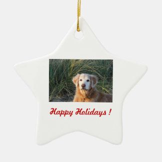 Happy Holidays ! - Chance Christmas Ornament
