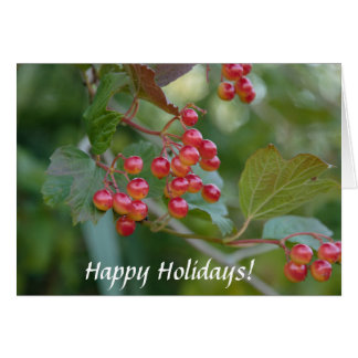 Happy Holidays : Red Berries Card