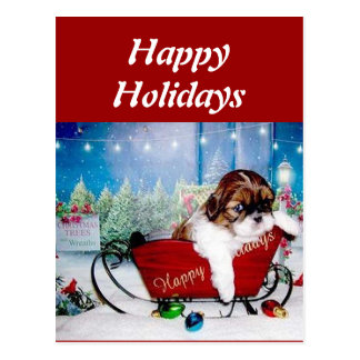 Happy Holidays Shih Tzu Postcard