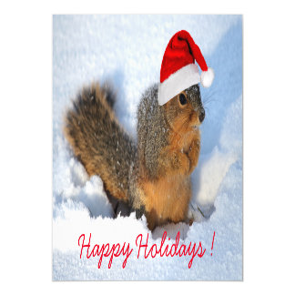 Happy Holidays Squirrel Magnetic Card