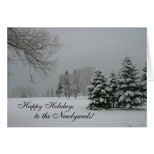 Happy Holidays to the Newlyweds! Cards