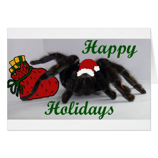 Happy Holidays!  with a Tarantula? Card