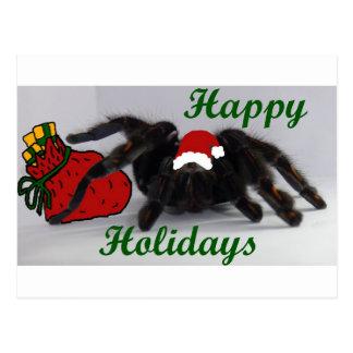 Happy Holidays! ... with a Tarantula? Postcard