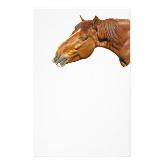 Happy Horse Flyer Design