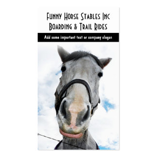 Happy Horse! Funny Smiling Horsey Business Cards