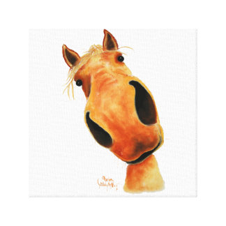 Happy Horse ' NuGGeT ' by Shirley MacArthur Canvas Print