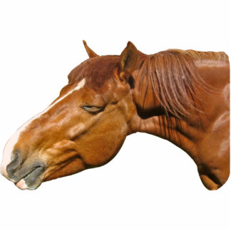 Happy horse standing photo sculpture