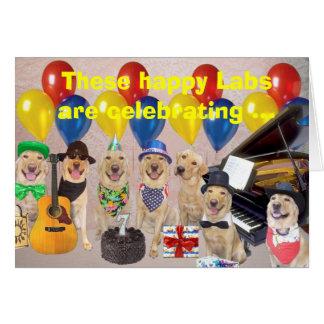 Happy Lab Birthday Greeting Card