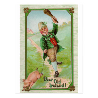 Happy Leprechaun Postcard