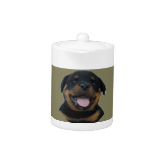 Happy Male Rottweiler Puppy