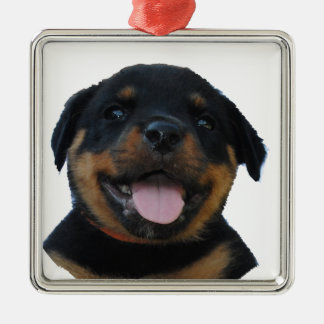 Happy Male Rottweiler Puppy Christmas Ornament