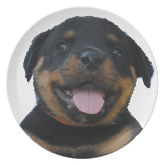 Happy Male Rottweiler Puppy Plate