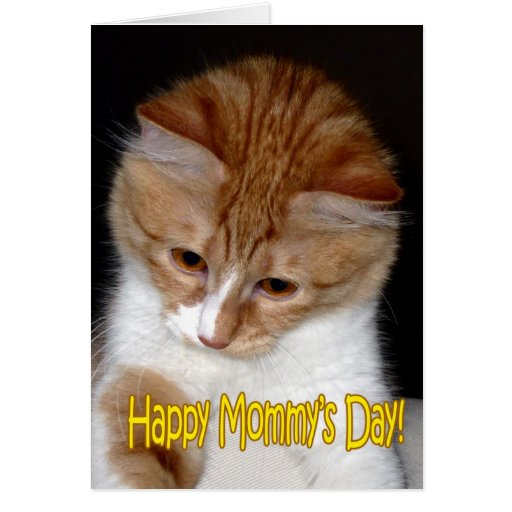 Happy Mommy's Day! Kitten Cards
