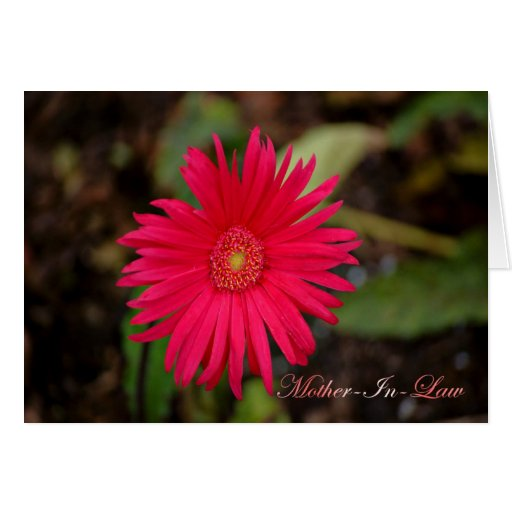 Happy Mother-In-Law Day Mother In Law Day flowers Greeting Cards