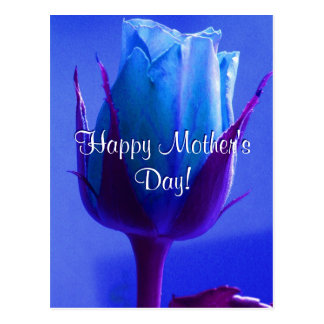 Happy Mother's Day Blue Rose Postcard