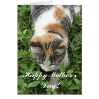 Happy Mother's Day Calico Cat Greeting card