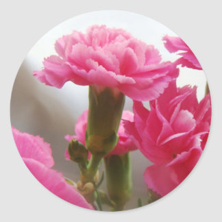 Happy Mother's Day - Carnation Classic Round Sticker