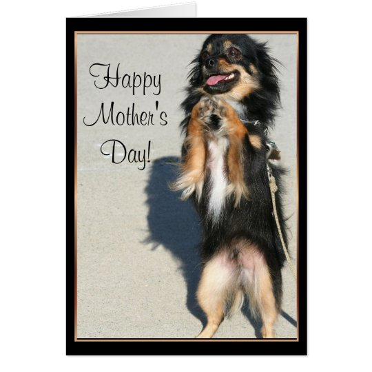 Happy Mother's Day Chihuahua Greeting Card