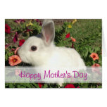 Happy Mother's Day Cute Bunny Card