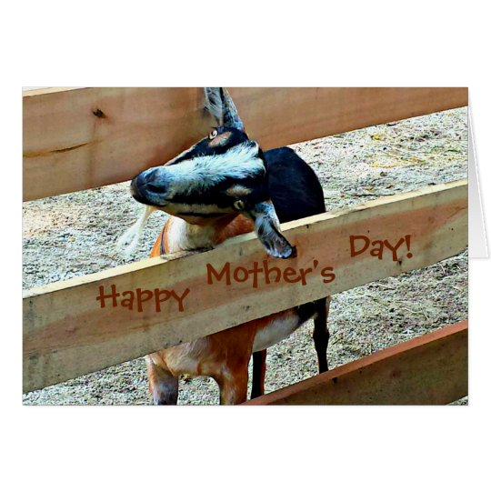 Happy Mother's Day from Adorable Kid (goat) Card