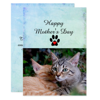 Happy Mother's Day From Your Cats Flat Card