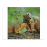 Happy Mother's Day - Mum and Baby Squirrel Postcard