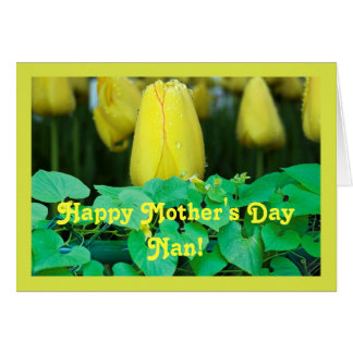 Happy Mother's Day Nan Greeting Card