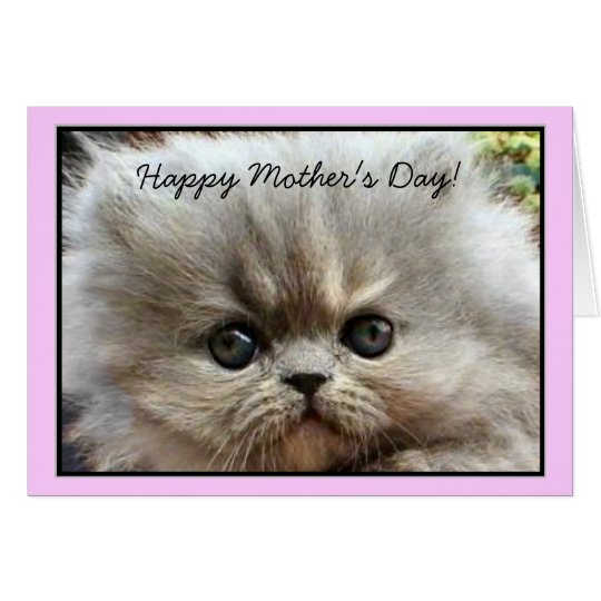 Happy Mother's Day Persian Kitten greeting card