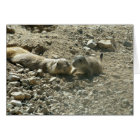 Happy Mother's Day - Prairie Dogs Card
