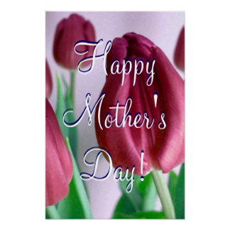 Happy Mother's Day Rosey Tulips Poster