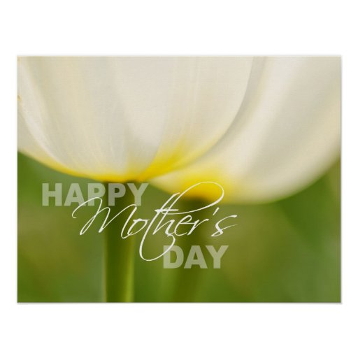 Happy Mother's Day Tulip Poster