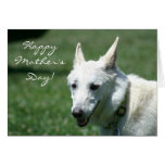 Happy Mother's Day White German Shepherd card