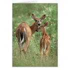 Happy Mother's Day White-Tailed Deer Fawn Card