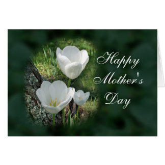 Happy Mother's Day White Tulips Greeting Card