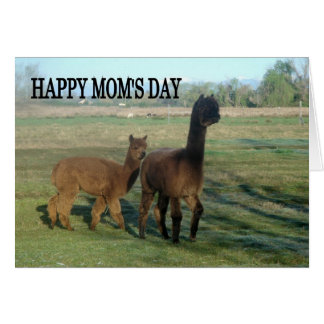 Happy Mum's Day Greeting Card